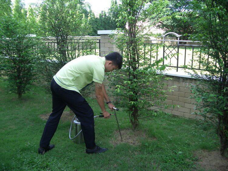 greennanothai green nano thai service pest control specialists