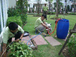 greennanothai green nano thai service little
